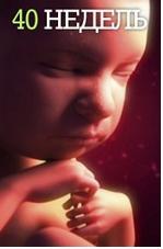 . В видеогиде участвуют пары, ожидающие рождения малышей. Они рассказывают о своих ощущениях, переживаниях, заботах.
